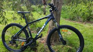 Mountain bike on grass leaning against tree.