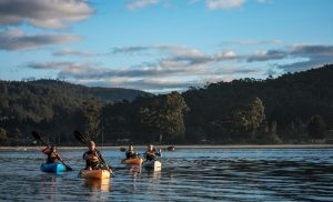 four kayakers on the water with trees and mountains in the background